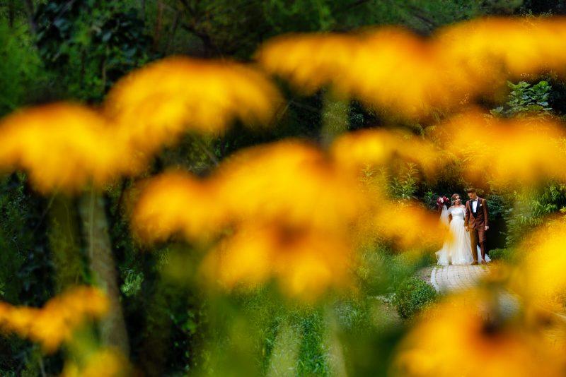 fotografie de nuntă elegantă și party