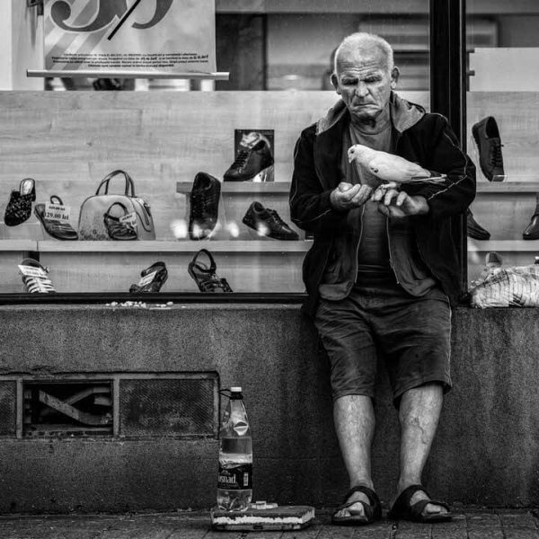 anghelbrothers-review-fuji-street-unu